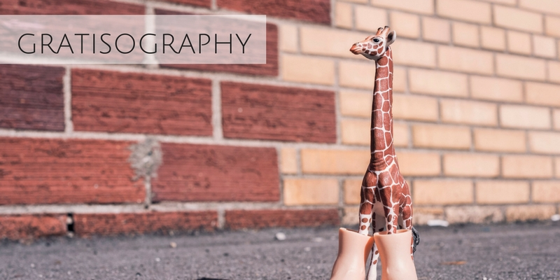 Funny stock photograph of giraffe in boots in front of brick wall from Gratisography